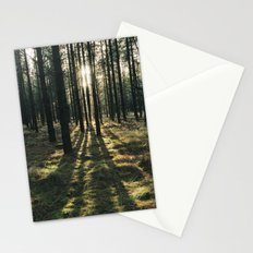 Sunlight through a dense forest. Norfolk, UK. Stationery Cards