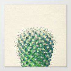 Cactus IV Canvas Print