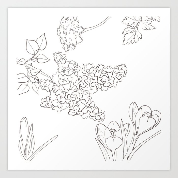 Flora of Fun - Color or Paint Your Own! Art Print