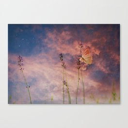 Butterfly and Blush Pink and Indigo Blue Sunset Canvas Print