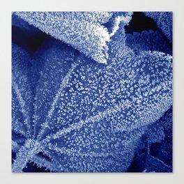 cold winter II Canvas Print
