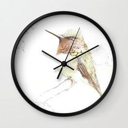 Humming Bird on his Perch Wall Clock