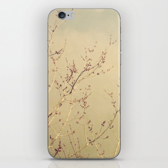 Vintage February Branches iPhone & iPod Skin
