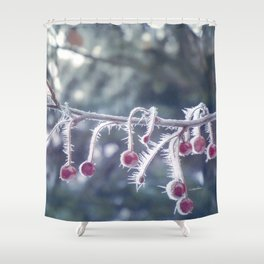 Berry Ice Freeze Shower Curtain