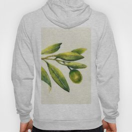 Olive branch Hoody