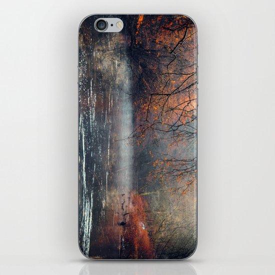 between fall & winter iPhone & iPod Skin