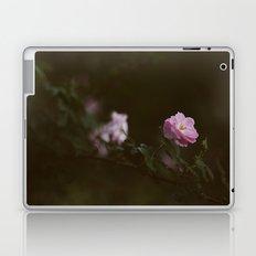 Rose #1 Laptop & iPad Skin