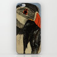 puffin iPhone & iPod Skins featuring Puffin  by EmilyGrantDesign