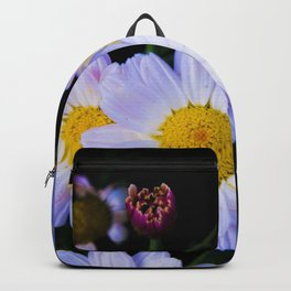 chamomile flowers Backpack