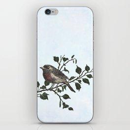 Winter king and Robin companions iPhone Skin