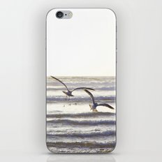 Follow Your Dream iPhone & iPod Skin