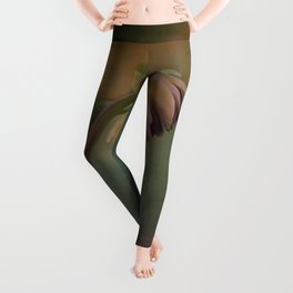 Once Upon a time a lonely flower Leggings