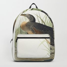 Salt Water Marsh Hen from Birds of America (1827) by John James Audubon etched by William Home Lizar Backpack