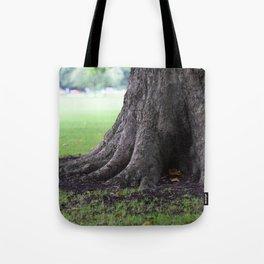 Cambridge tree 3 Tote Bag