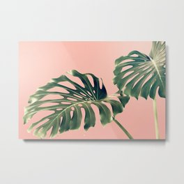 Monstera Blush Metal Print