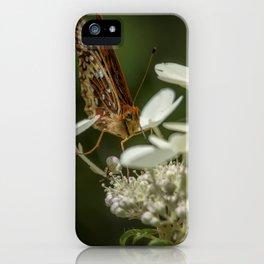 Butterfly on a Hydrangea iPhone Case