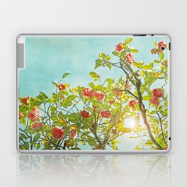 Pink Camellia japonica Blossoms and Sun in Blue Sky Laptop & iPad Skin