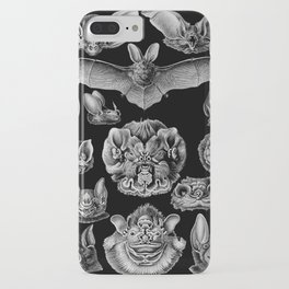 1904 Haeckel Chiroptera iPhone Case