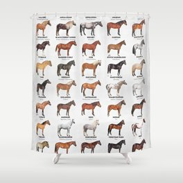 Horse Breeds Of The World Shower Curtain