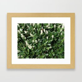 green/white Framed Art Print