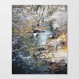 A Creek on a Snowy Day in Boulder, Colorado II Canvas Print