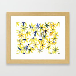 Blue Eyed Susan Framed Art Print