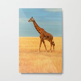 Portrait giraffe Metal Print