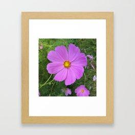 Pink perfection Framed Art Print