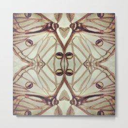 Spanish Moon Moth #2 Metal Print