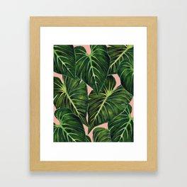 Tropical II Coral Framed Art Print