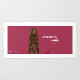 American Mink Art Print