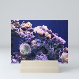 Under the Sea Puget Sound Mini Art Print