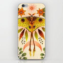 Moth Wings IV iPhone Skin