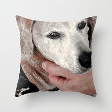 Portrait of a Dachshund Throw Pillow