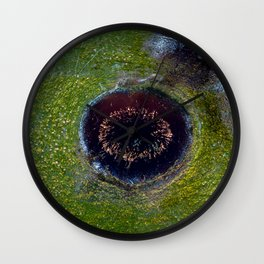The Eye of Reed Wall Clock