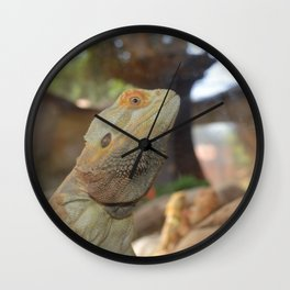 Lizard in the front Wall Clock