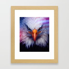 American Flag & Eagle Framed Art Print