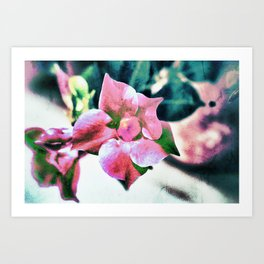 abstract Dipladenia Art Print