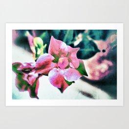 abstract Dipladenia Art Print