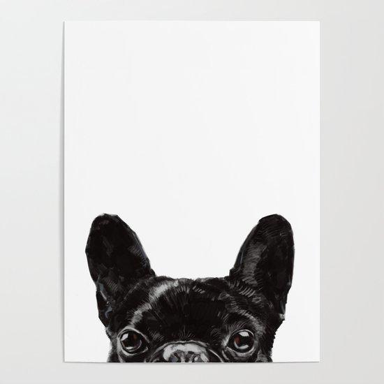 Peeking French Bulldog by bignosework