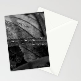 Black and white raindrops on grass Stationery Cards