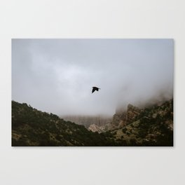 Free as a bird flying through the mountains, Big Bend - Landscape Photography Canvas Print