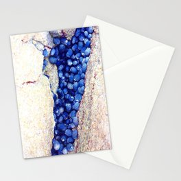 Blue Shells Stationery Cards