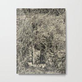 Briar Metal Print
