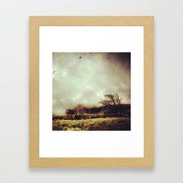 Cader Idris I Framed Art Print