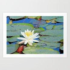 Magic Lily Art Print