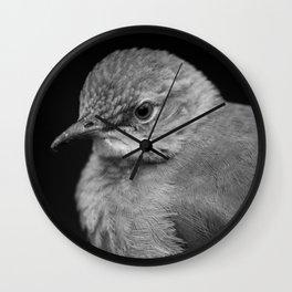 Bird - Furnarius Rufus Wall Clock