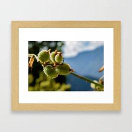 Spike Spoke Framed Art Print