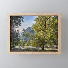 The Tree by Sentinel Bridge Framed Mini Art Print