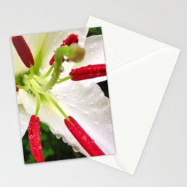 Mourning Lily Stationery Cards